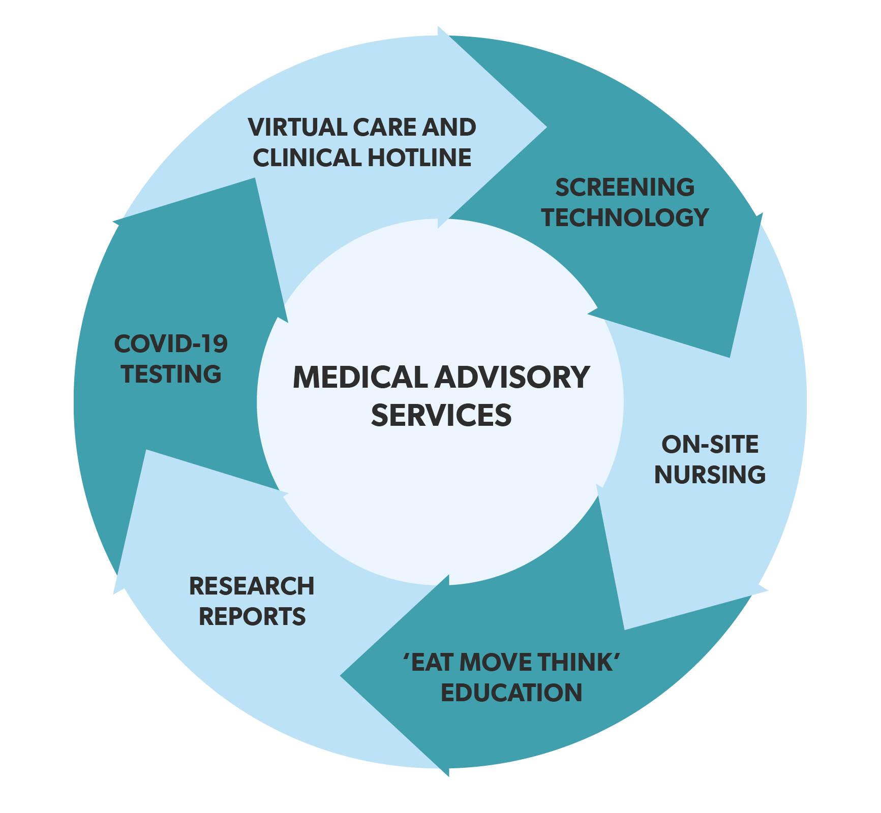 Medical Advisory Services Infographic